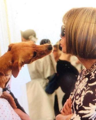 Фото №7 - Фэшн-дизайнеры и их собаки. Заряжено на лайки!