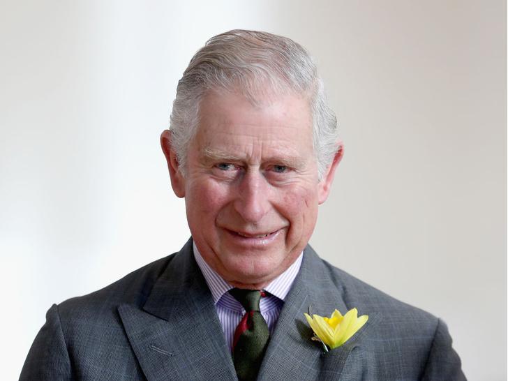 Фото №1 - Загадочное украшение: что означает кольцо на мизинце принца Чарльза