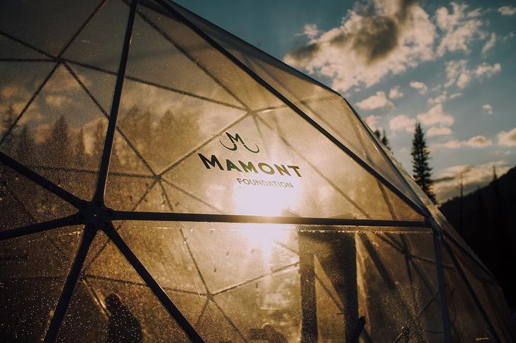 Фото №22 - Получить незабываемые впечатления и отдохнуть в глэмпинге MAMONT CAMP на Алтае теперь может каждый