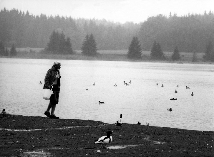 Фото №10 - Путешествие Конрада с дикими гусями