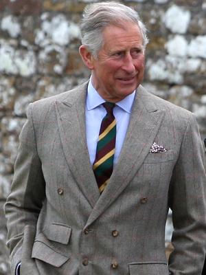 Фото №3 - Дотошный принц: что Чарльз не поделил с сестрой герцогини Камиллы