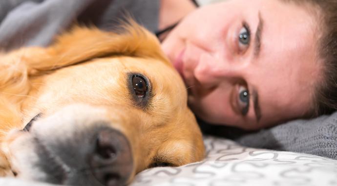 Домашние животные: мы любим их слишком сильно?