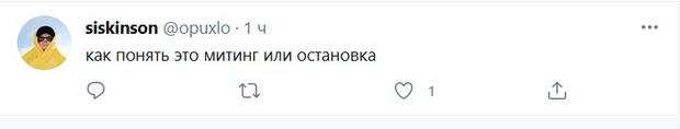 Фото №3 - Лучшие шутки неунывающих участников митинга в поддержку Навального