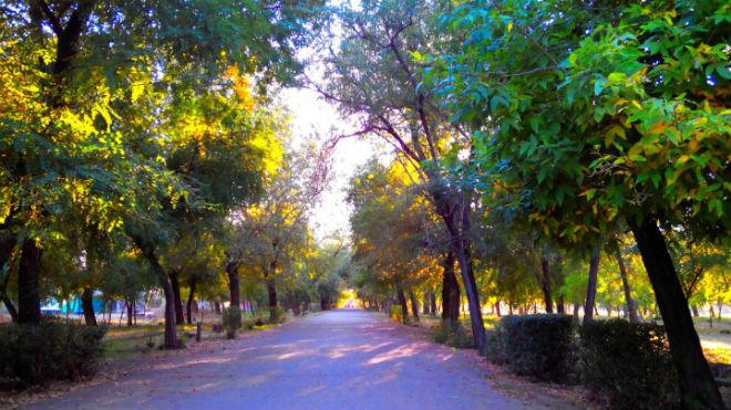 Фото №29 - 10 мест в Астрахани, где осенью – настоящая сказка!