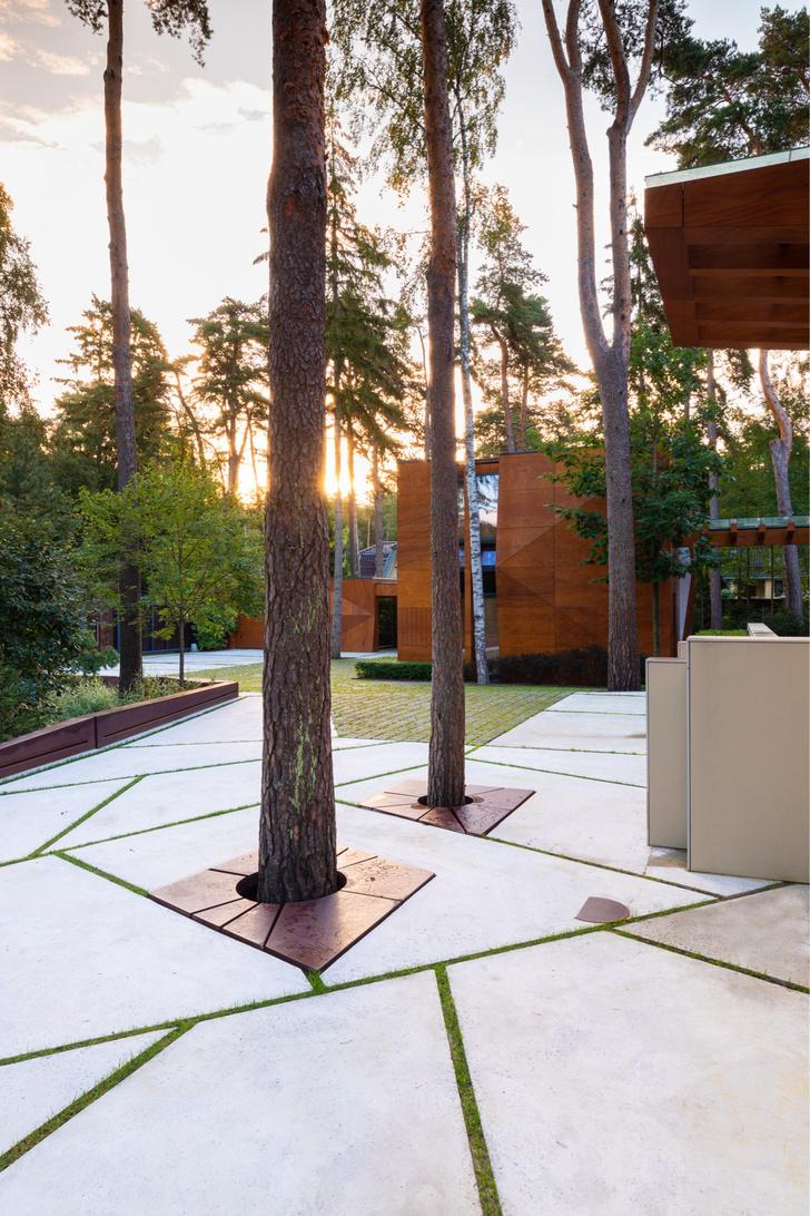 Фото №6 - Частный сад на Финском заливе по проекту бюро «Мох»