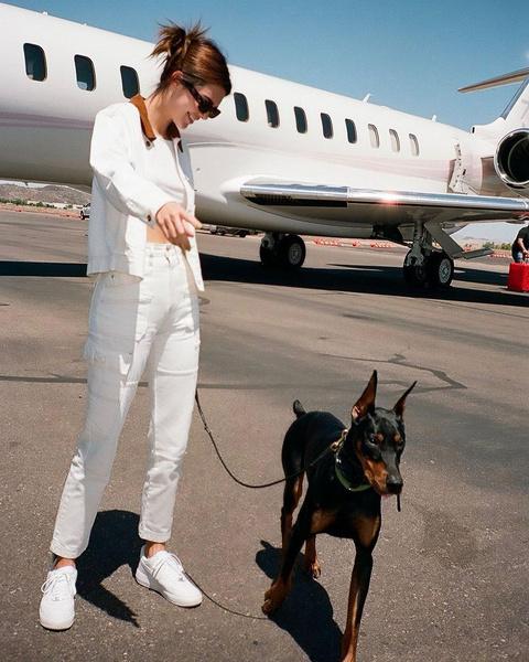 Фото №10 - Милоты пост: любимые собачки знаменитостей 🐶⭐