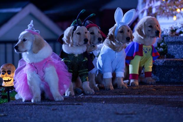 Фото №3 - Настроение «Хэллоуин»: 7 добрых страшилок для тех, кто не любит ужастики