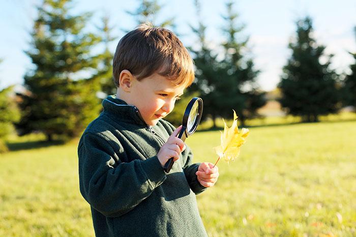 Фото №2 - Я познаю мир: география и природоведение для малышей