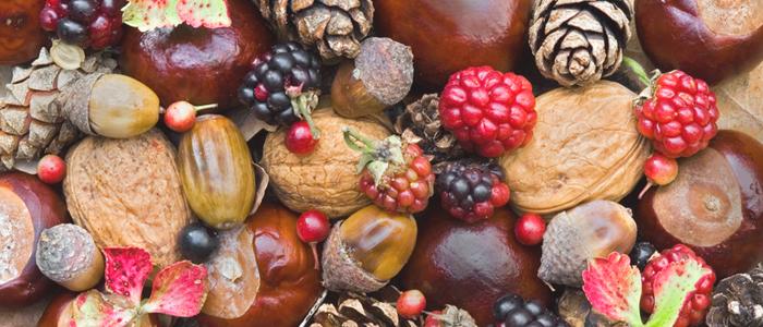 Фото №5 - Осень для гурманов: сезонные деликатесы