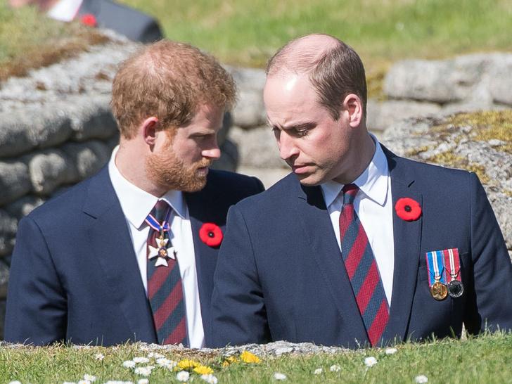 Фото №1 - Единственный способ восстановить отношения Гарри и Уильяма (но они на это не пойдут)