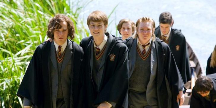 Фото №10 - 10 причин, почему из фильмов «Гарри Поттер» вышло бы отличное аниме ⚡