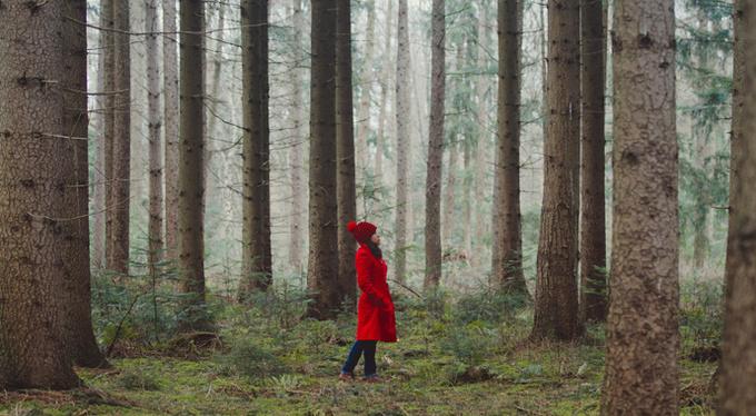 Путь Красной Шапочки: депрессия как целительная сила