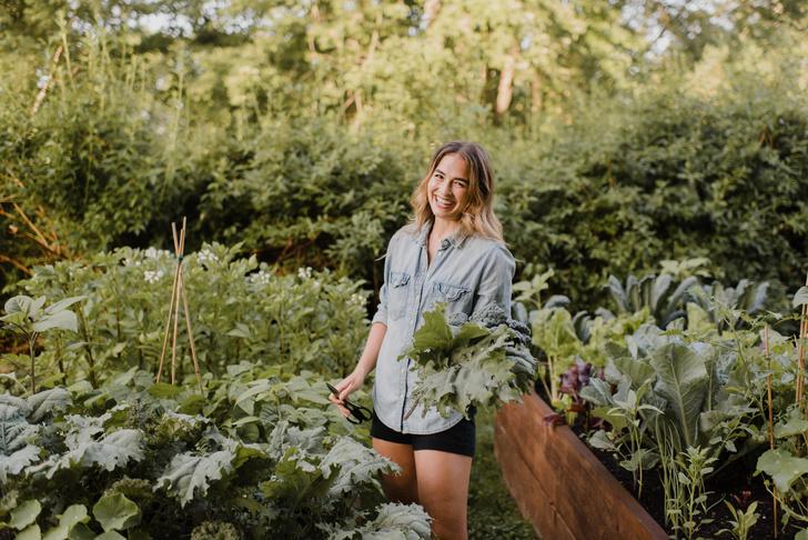 Фото №1 - Для хорошего урожая: 5 вещей, которые нужно сделать в саду в июле