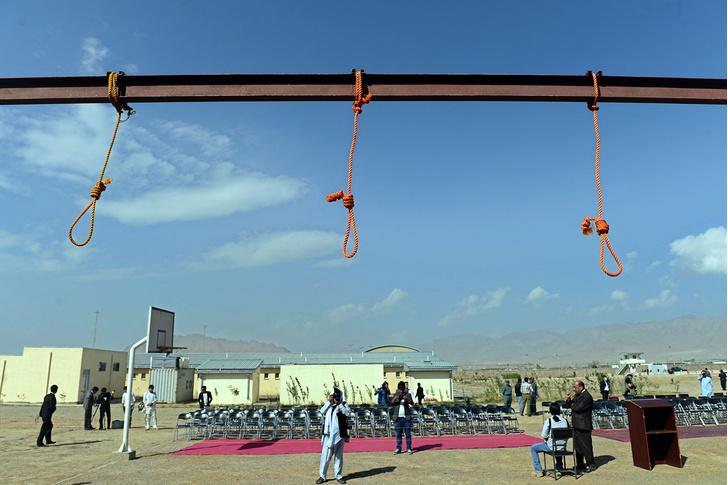 Фото №1 - Почему талибы не откажутся от казней? Рассказывает боевик