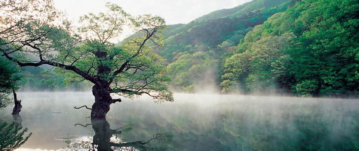 Фото №1 - Южная Корея: неближний восток