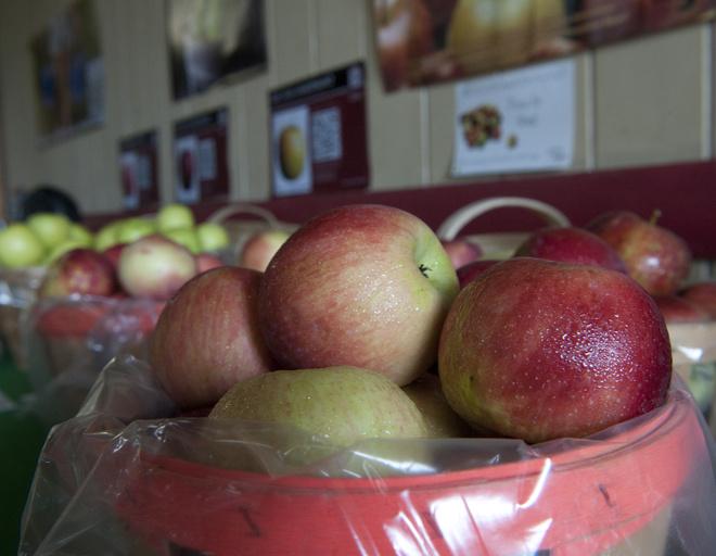 Творожное печенье с яблоками