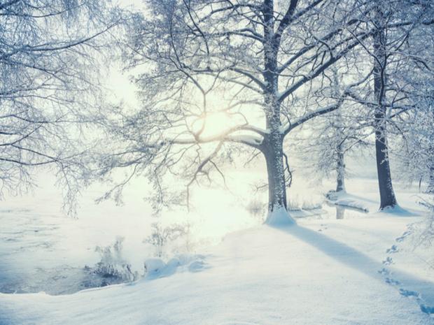 Фото №5 - Гороскоп на зиму 2021 по знакам Зодиака: сверяемся со звездами
