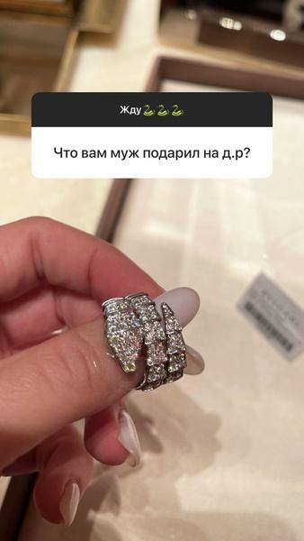 Фото №2 - Змейка его: муж Бородиной сделал ей королевский ювелирный подарок