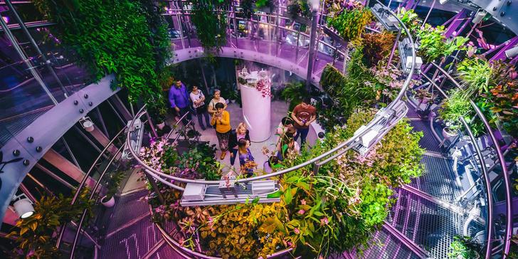 Фото №5 - Полет над Москвой, роботы, ледяная пещера и еще 5 причин посетить парк «Зарядье»
