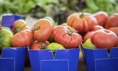 Описание сорта томата Малиновый