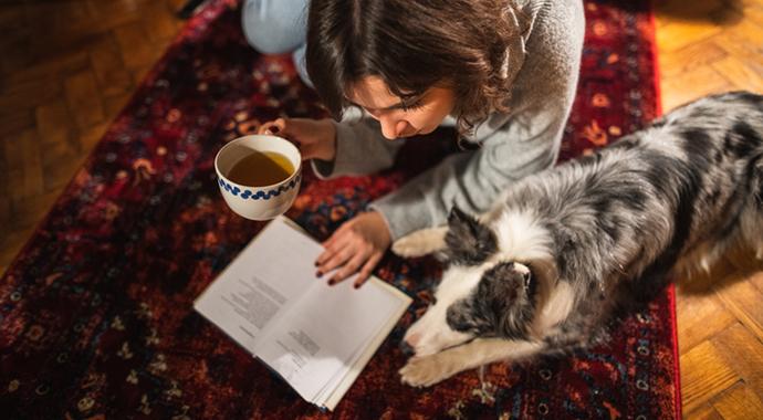 Друг человека: как собаки спасают людей