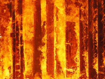 Пожар: горит деревянное здание