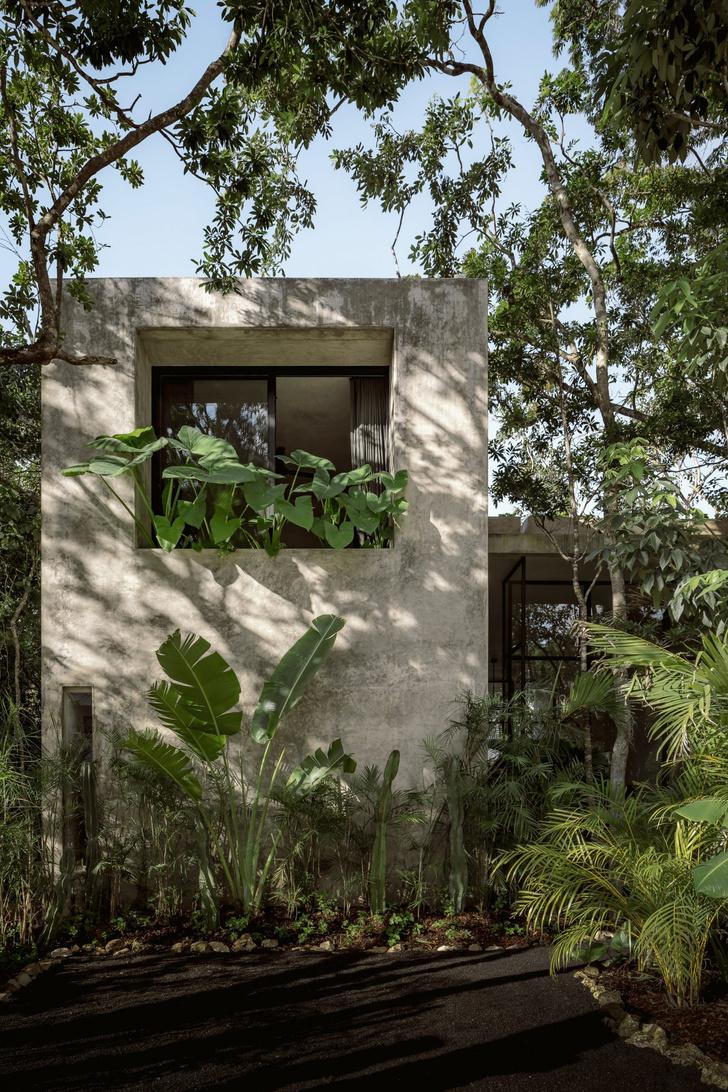 Фото №1 - Бруталистская бетонная вилла в джунглях Тулума