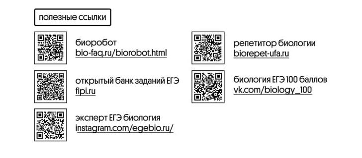 Фото №1 - Без паники: как подготовиться к ЕГЭ по биологии за месяц