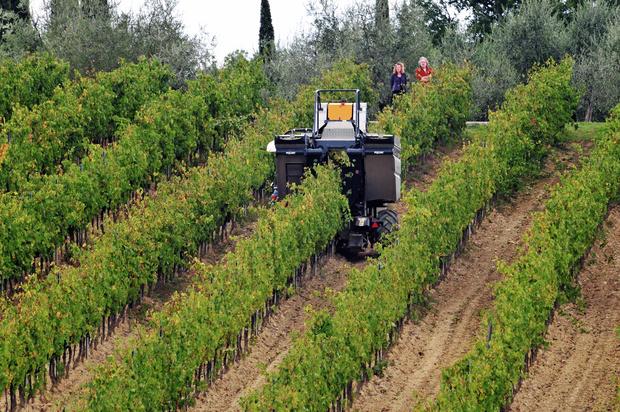 Фото №4 - Новый робот борозды не испортит. Об успехах сельского хозяйства XXI века