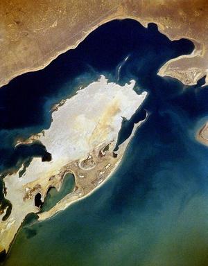 Фото №3 - Покинутый советский остров-полигон, на котором захоронено биологическое оружие