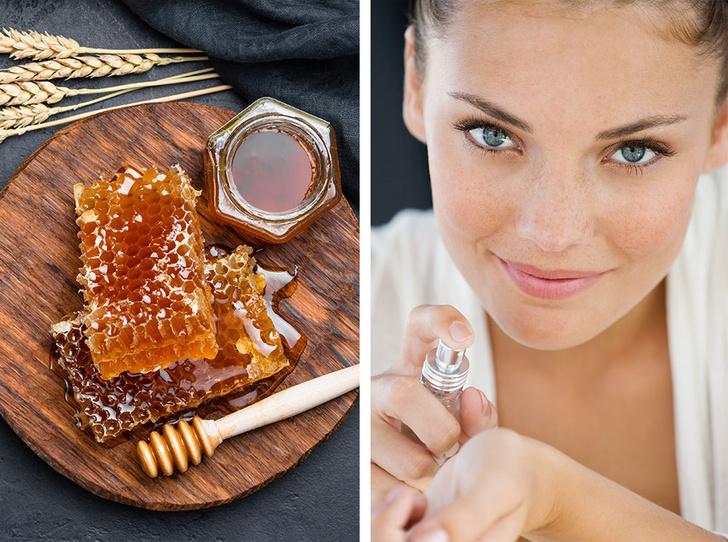 Фото №1 - Сладкий плен: 20 самых соблазнительных медовых ароматов