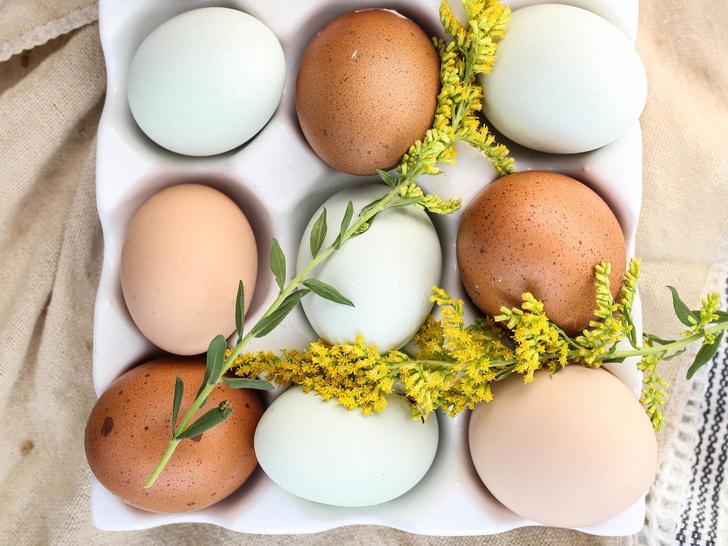 Почему надо есть яичный желток