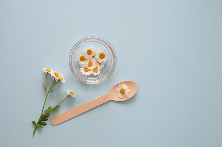 Фото №2 - Ромашка против простуды: 5 эффективных рецептов