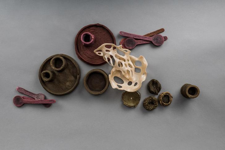 Фото №10 - Эко-посуда из пищевых отходов