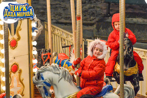 Фото №5 - Открыт новый сезон в Цирке Деда Мороза