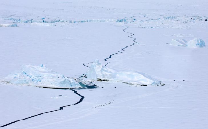 Фото №1 - В Антарктиде исчезло озеро