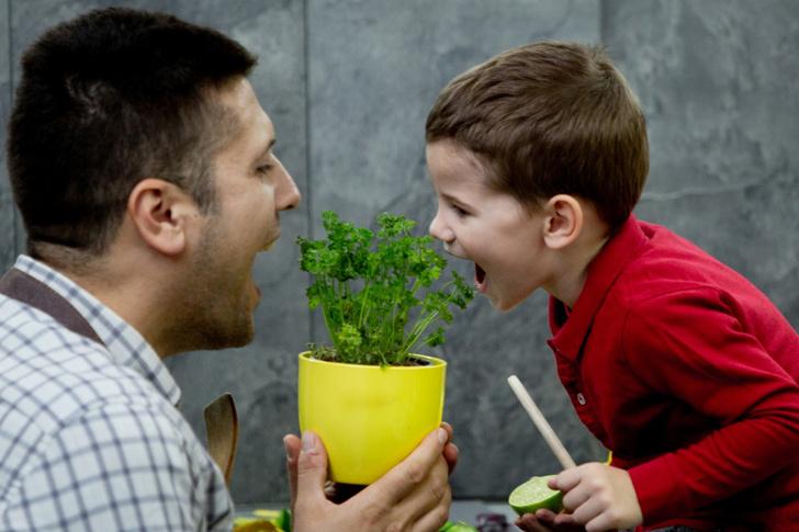 Фото №4 - 3 совета, как обустроить мини-огород у себя дома