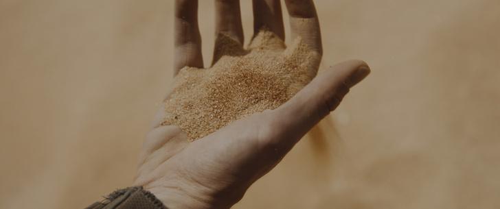 Фото №7 - «Дюна»: гид по вселенной для тех, кто не читал книги