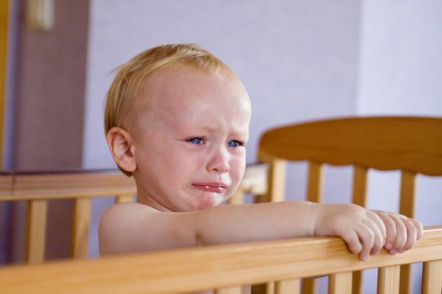 Фото №1 - Особо капризен: 7 известных психологов о детских истериках