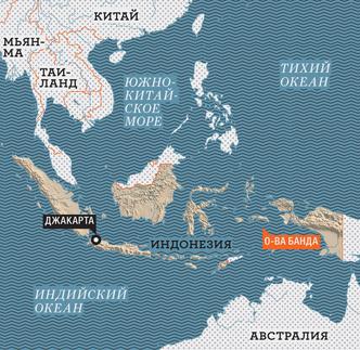 Фото №10 - Орех преткновения: как устроена жизнь на «островах специй»