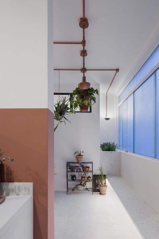 Фото №12 - Квартира с зеленой перегородкой в Сан-Паулу