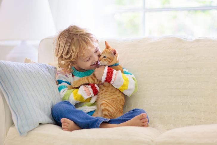 Фото №1 - Ребенок просит питомца: кого завести, если малыш— аллергик