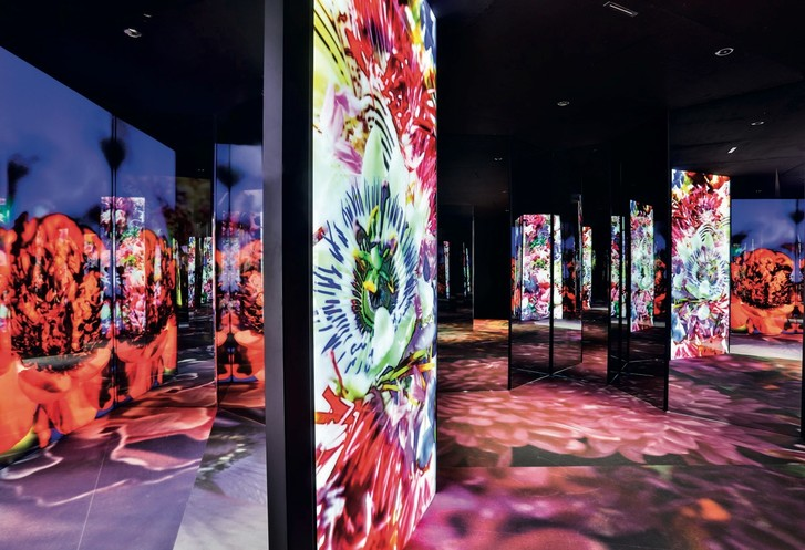 Фото №1 - Выставка Van Cleef & Arpels в Париже