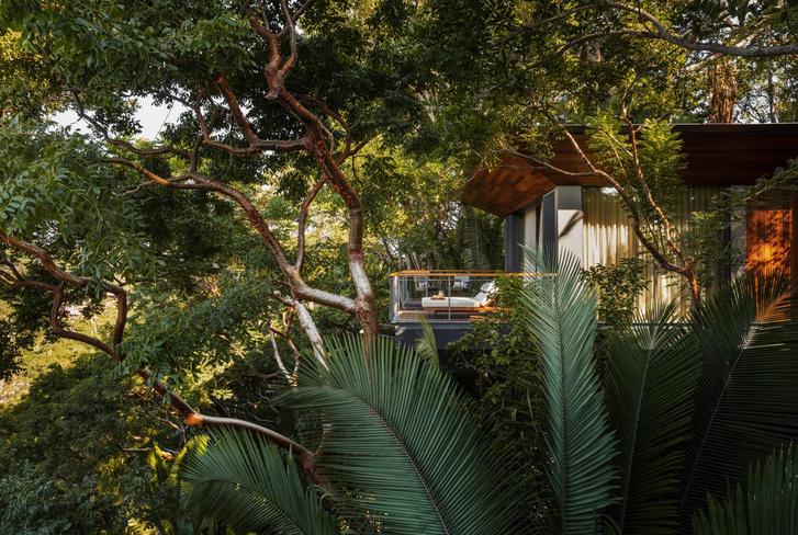 Фото №2 - Отель в тропическом лесу в Мексике