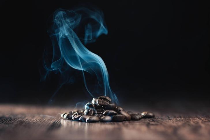Фото №1 - Почему запахи со временем исчезают?