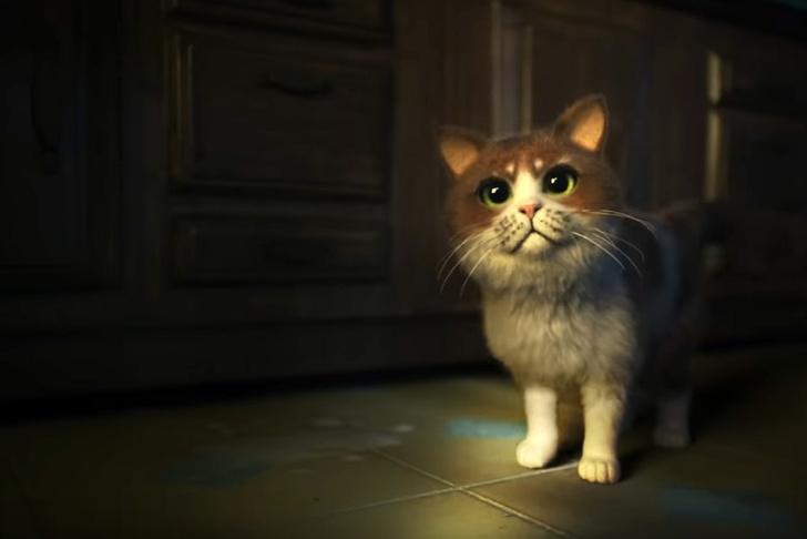 Фото №1 - Первый в мире «ужастик для кошек» (видео)