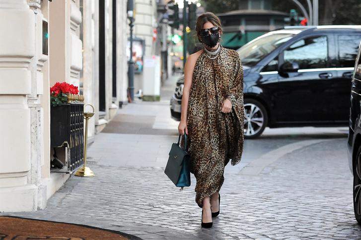 Фото №4 - Леопардовая туника, чокер с кристаллами и маска с шипами: Леди Гага в образе итальянской дивы