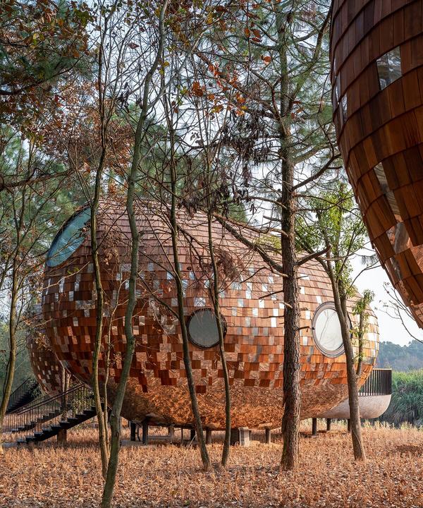 The Seeds: гостевые дома в Китае