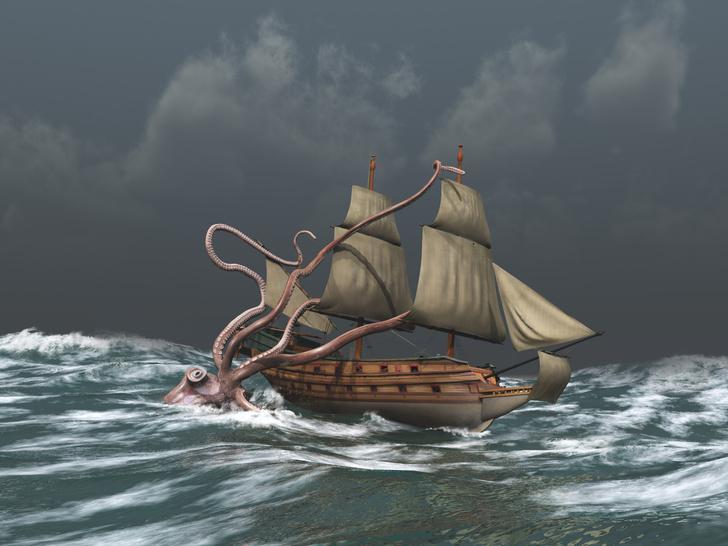 Фото №1 - Океанологи рассказали, где найти Кракена
