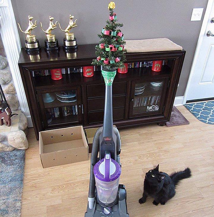 Фото №10 - Как защитить новогоднюю елку от кота: 7 самых хитрых способов с фотоинструкцией